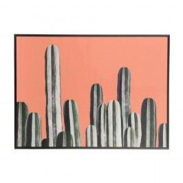Obraz J-Line Cacti, 77x57cm