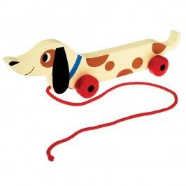 Dřevěný tahací jezevčík Rex London Charlie The Sausage Dog, délka31,5cm