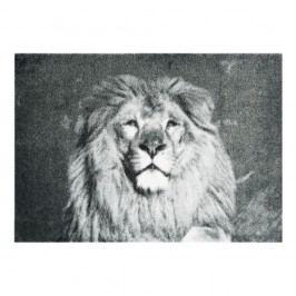 Šedá rohožka Hanse Home StateMat Lion, 50 x 70 cm