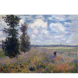 Obraz Claude Monet - Poppy Fields near Argenteuil, 40x30 cm