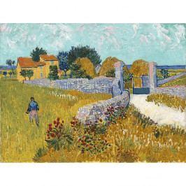 Reprodukce obrazu Vincenta van Gogha - Farmhouse in Provence, 40x30cm