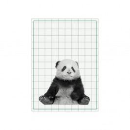 Kuchyňská utěrka PT LIVING Panda, 50x70cm