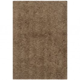Hnědý koberec Safavieh Edison, 60 x 91 cm