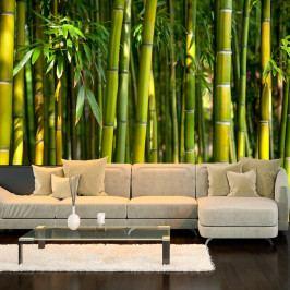 Velkoformátová tapeta Artgeist Oriental Garden, 400x280cm