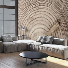 Velkoformátová tapeta Artgeist Wood Grainl, 300x210cm