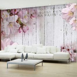 Velkoformátová tapeta Artgeist Apple Blossoms, 300x210cm
