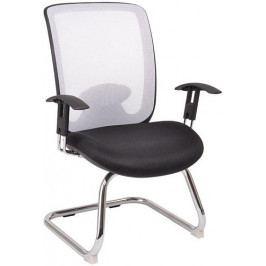 Sedia Židle W-81 E