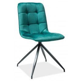 Casarredo Jídelní čalouněná židle TEXO zelená