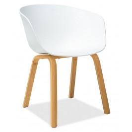 Casarredo Jídelní židle EGO bílá/dub