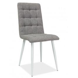 Casarredo Jídelní čalouněná židle OTTO šedá/bílá