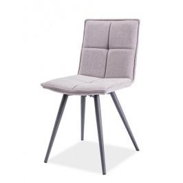 Casarredo Jídelní čalouněná židle DARIO šedá