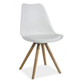 Casarredo Jídelní židle ERIC bílá