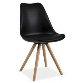 Casarredo Jídelní židle ERIC černá