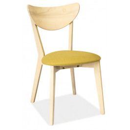 Casarredo Jídelní čalouněná židle CD-37 zelená