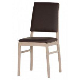 Casarredo Jídelní čalouněná židle DESJO 101 - ekokůže