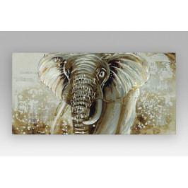 Autronic Obraz slon DOR036