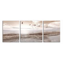 Obraz Ptáky a pláž C6023BP