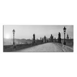 Obraz Karlův most C2029AP
