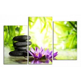 Obraz Zen kameny a leknín C5080DO