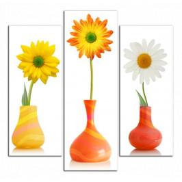 Obraz Květy ve vázách C3088CS