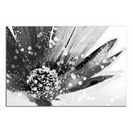 Obraz Květ C2108AO