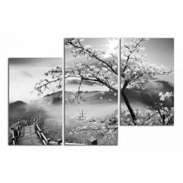 Obraz Strom a hory C2164DO
