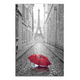 Obraz Eiffelovka a deštník C2344AO