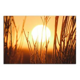 Obraz Slunce C3402AO