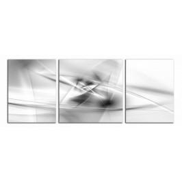 Obraz Černobílá abstrakce C2413BP