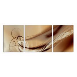 Obraz Hnědá abstrakce C6509BP