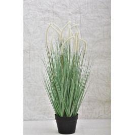 Harasim Dekorativní tráva v květináči 89 cm HR116343