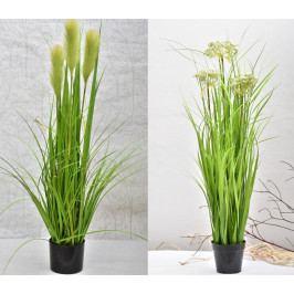 Harasim Dekorativní tráva v květináči 107 cm HR116353