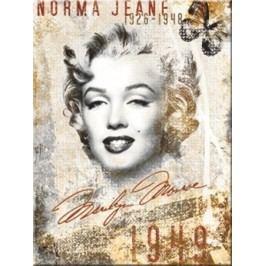 Plechová cedule Marylin Monroe 1949 Rozměry: 30x40cm