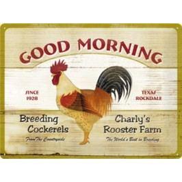 Plechová cedule Good Morning 30x40cm Rozměry: 30x40cm
