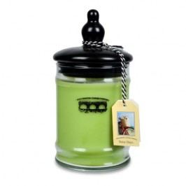 Bridgewater Candle Company Vonná svíčka DAISY DAYS Velikost: 524g