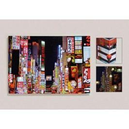 Obraz LED Tokyo 70x50cm