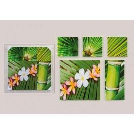 Obraz Bambus 5ks