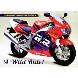 Plechová cedule Motorka A wild ride 30x40cm Rozměry: 30x40cm