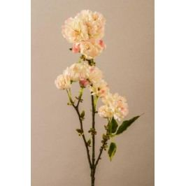 Sakura krémovorůžová 77cm
