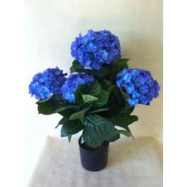 Hortensie 53x12cm Barva: modrá