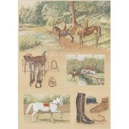 Obraz koně promenáda 38x48cm