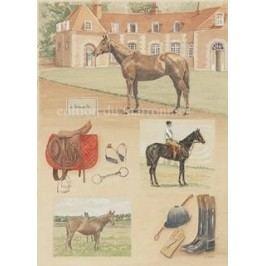 Obraz koně jízdárna 38x48cm