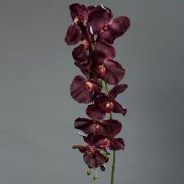 Orchidea 10 květů 153cm Barva: fialová