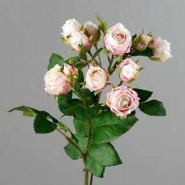 Růže jedenáct květů 76cm Barva: světle růžová