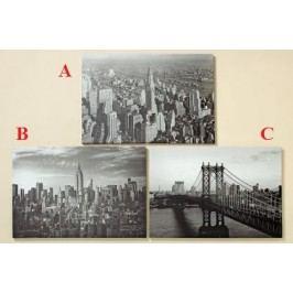 Obraz NY dřevo textil 70x50cm Provedení: A