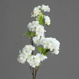 Větev višeň květ 81cm Barva: bílá