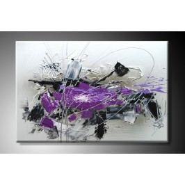Obraz na plátně fialová abstrakce Rozměry: 60x40cm