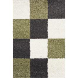 Zelený koberec SHAGGY 91065 120x170