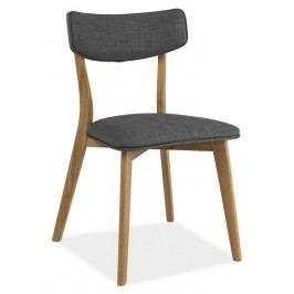 Smartshop Jídelní čalouněná židle KARL, šedá/dub