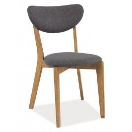 Jídelní čalouněná židle ANDRE, šedá/dub